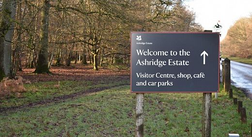 The National Trust, Ashridge